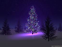 beautiful beautiful christmas tree with lights and decorations for