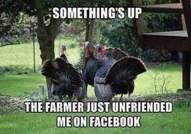 a thanksgiving humor to brighten your day 55 pics