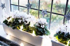 Christmas Window Decorations For Home by Window Sill Decorations For Christmas Songbird