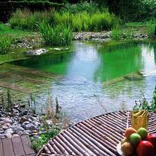 Backyard Swimming Ponds by 71 Best Piscine Bio Images On Pinterest Natural Pools Natural