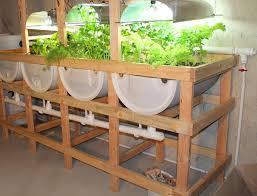 suburban aquaponics benefits of indoor and outdoor gardening