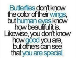 you are special quote gagthat 31922 quotesnew