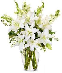 next day delivery flowers best 25 next day flowers ideas on anemone wedding