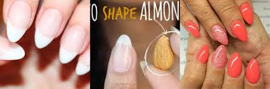 7 basic nail shapes pakistan review an online news and
