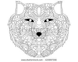 wolf coloring book adults vector illustration stock vector