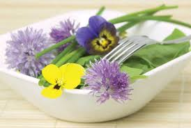 edible flower garnish adorn your plate with edible flowers food and recipes