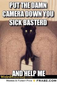Weird Funny Memes - put the damn camera down you sick basterd weird memes funny pics