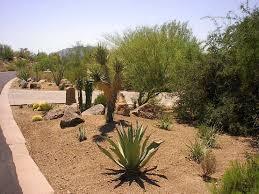 Desert Landscape Ideas by Backyard Desert Landscaping Ideas Marissa Kay Home Ideas