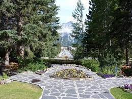 a concise guide for planning a trip to banff national park