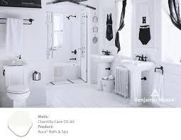 Bathroom Ideas Vintage Colors 19 Best Kohler U0026 Benjamin Moore Images On Pinterest Benjamin