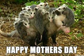 Mothers Day Funny Meme - mother s day 2017 best funny memes heavy com page 2