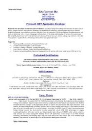 Standard Resume Template Examples Of Resumes 79 Exciting An Example A Resume Summary