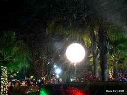 spotlight on florida let it snow geophilia photography