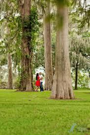 9 best azalea gardens winter park fl images on pinterest winter