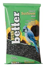 sunflower seed u2013 nunn better