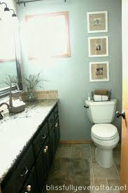 Concept Bathroom Makeovers Ideas Endearing Concept Bathroom Makeovers Ideas Diy Remodel