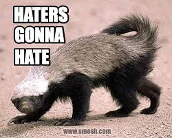 Honey Badger Memes - honey badger clipart cat pencil and in color honey badger