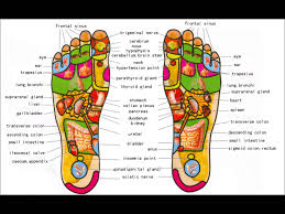 Foot Pain Map Foot Reflexology Map For Beginners 1 Youtube