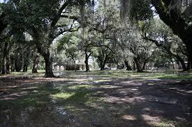 New Orleans City Park Map by Midcity U0026 City Park Crescent City Living