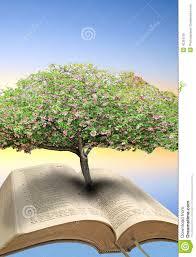 tree of bible stock photo image 40304125