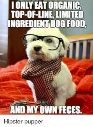 Hipster Dog Meme - i onlyeatorganic top of line limited ingredient dog food and my own