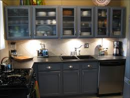 100 dark kitchen cabinets with black appliances interior