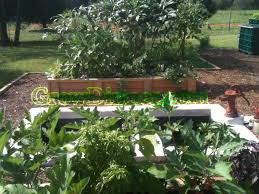 organic farm and training facility for a healthy sustainable lifestyle