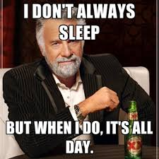 All Day Meme - i don t always sleep but when i do it s all day create meme
