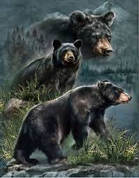 black bear lenticular 3d picture animal poster painting home wall