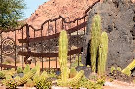 free images landscape sand needle fence architecture plant