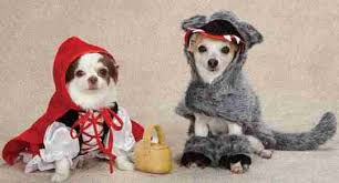 dog halloween costumes and pet costumes