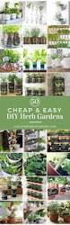 Kitchen Garden Window Ideas by Best 25 Diy Herb Garden Ideas On Pinterest Indoor Herbs Herb