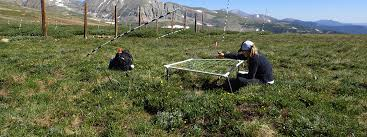 ecology and evolutionary biology university of colorado boulder
