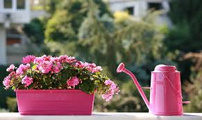 Planting Ideas For Small Gardens by Small Garden Ideas For Condo Dwellers Point Ruston