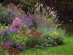 Flowering Shrubs New England - blog page 2 of 3 procare landscape