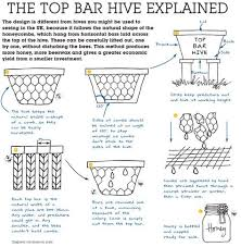 Harvesting Honey From A Top Bar Hive The Top Bar Hive Explained Top Bar Bees Pinterest Top Bar
