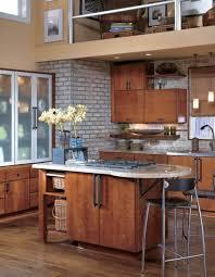 furniture perfect modern wellborn kitchen cabinet ideas