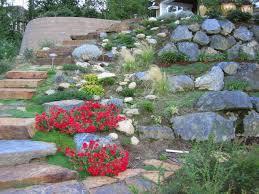 trendy idea plants for rock gardens creative decoration favorite