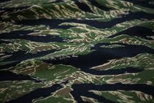 authentic tiger stripe professional design service