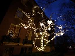 Outdoor Tree Fairy Lights Outdoor Designs
