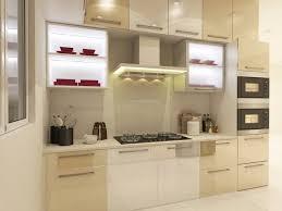 organizing kitchen cabinets ideas awesome organize kitchen cabinets paint color charming on organize