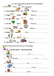 english worksheet possessive adjectives information pinterest