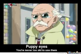 Puppy Eyes Meme - puppy eyes by fairytail2020 meme center