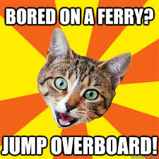 Bored Meme - bored on a ferry cat meme cat planet cat planet