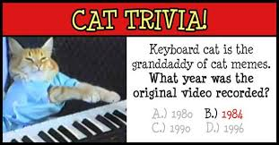 Keyboard Cat Meme - keyboard cat oskar klaus