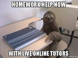 Exles Of Internet Memes - how to write an essay on the film the help yahoo answers