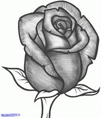 rose images for drawing rose tattoo tribal drawing