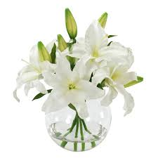 white lillies winward silks casablanca bouquet in glass vase reviews