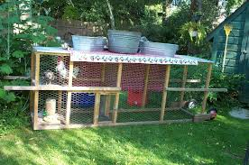 salty and peppers chicken tractor backyard chickens