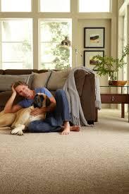 best color of carpet to hide dirt best carpet for pets shaw floors